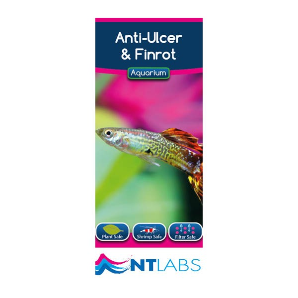 NT Labs Anti-Ulcer & Finrot