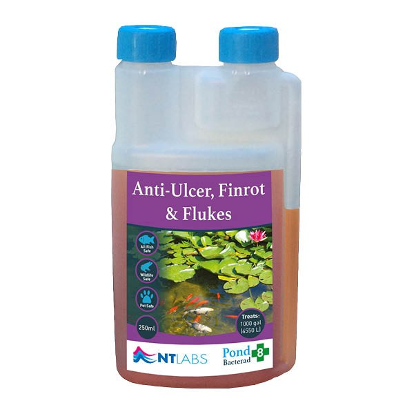 NT Labs Anti-Ulcer Fin-Rot & Flukes