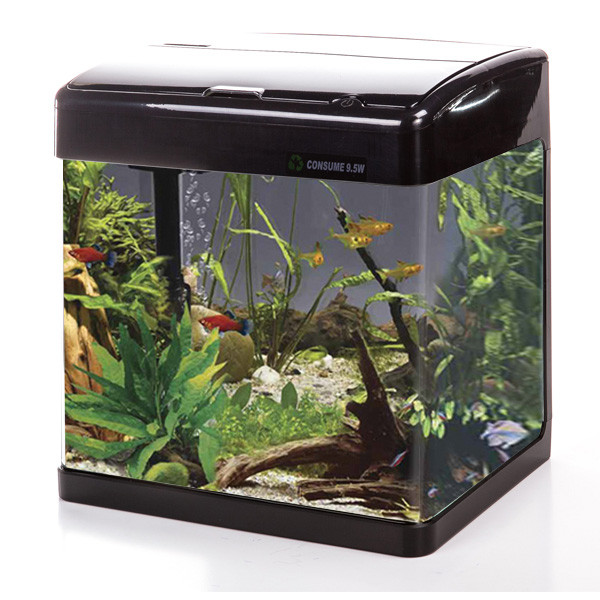 Betta Lifespace H5 Aquarium - Black