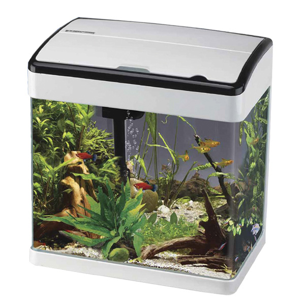 Betta Lifespace H7 Aquarium - White With Black Edge